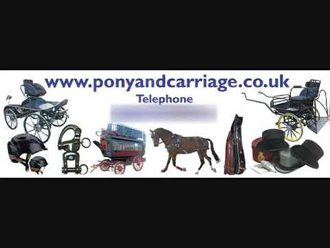 Carriage driving horse harness measurements