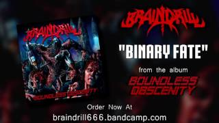 """Binary Fate"" from album Boundless Obscenity"