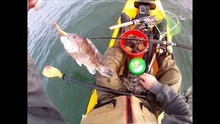 Blackfish Fishing with Berkley Gulp while Kayak Fishing