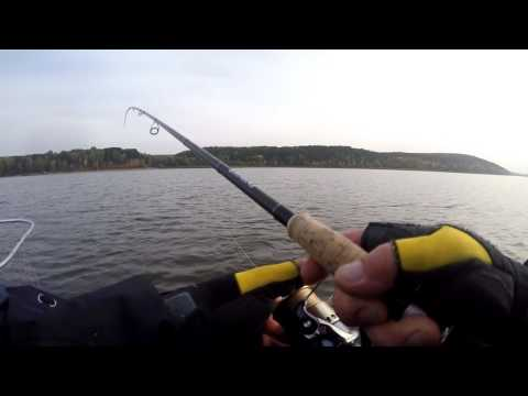 прогноз клева рыбы в сухом берсуте