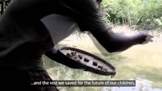 Household ponds help 50,000 Bangladeshi women produce food, income CGIAR (en)