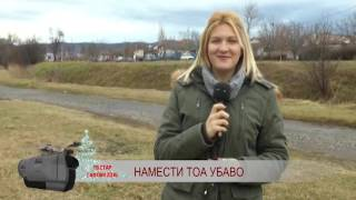 TV STAR GAFOVI 2016