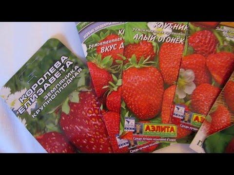 ЯНВАРЬ(часть2) - для садоводов, цветоводов и огородников