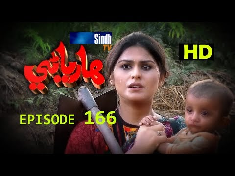Hareyani Ep 166 -Sindh TV Soap Serial  - 15-1-2018 - HD1080p -SindhTVHD-Drama