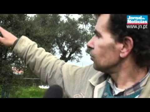 Helicóptero da TVI caiu num descampado em Corroios