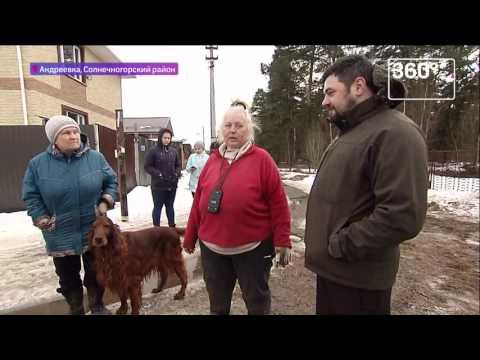 Конюшню систощенными лошадьми нашли вПодмосковье