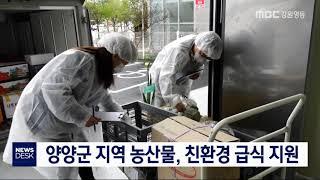 투/양양군 친환경 급식, 농산물 지원사업 추진