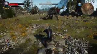 The Witcher 3 - Morvudd fight