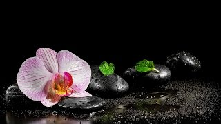 Relaxing Music For Peace Of Mind Healing Meditation Music For Sleeping And Deep Relaxation