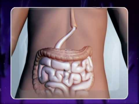 Surviving Stomach Cancer