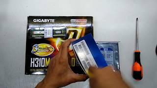 intel Pentium GOLD G5400 Gigabyte H310M DS2 2.0 Kingston 4GB RAM WD 1TB Self Assemble Budget PC