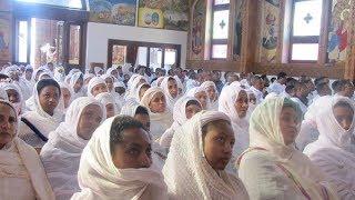 Kulu Zefekede Gebre Egziabher | Ethiopian Orthodox Tewahedo Mezmur