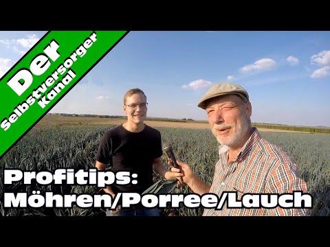 Möhren Porree/Lauch, Tipps Vom Bioprofi