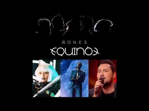 equinox bg  - bones