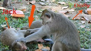 Evil Dolly attacked on Orphan Jack, Jack hurt and cry very loudly, Poor Jack / Monkey post