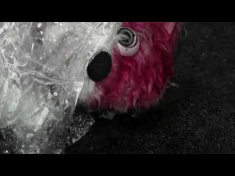 Breaking bad - pink bear