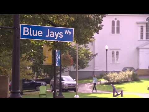 Halifax shows its support for the Blue Jays