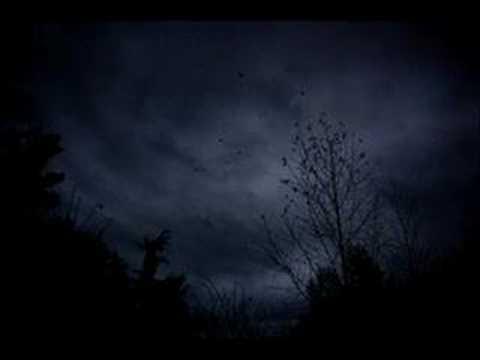 Insomnium - Bitter End