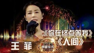 东方卫视2017跨年盛典:王菲《你在终点等我》《人间》【东方卫视官方高清】