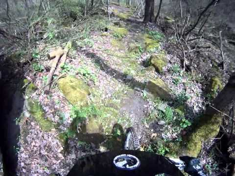 Mohican Wilderness - Trail #2