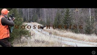 Hirvisyksy 2016 / Moose hunting