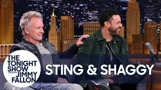 Download Lagu Sting Met Shaggy After He Wandered Onstage During