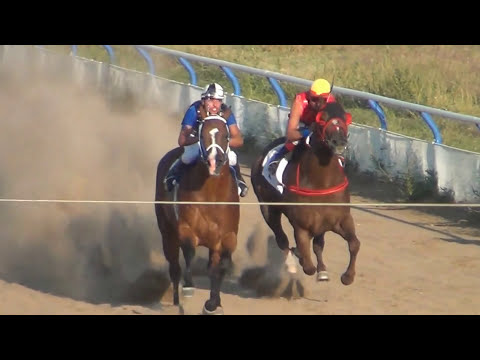 BRINCA BRINCA VS PITUFO EN DODGE CITY DOWNS SEPTIEMBRE 16 -2012