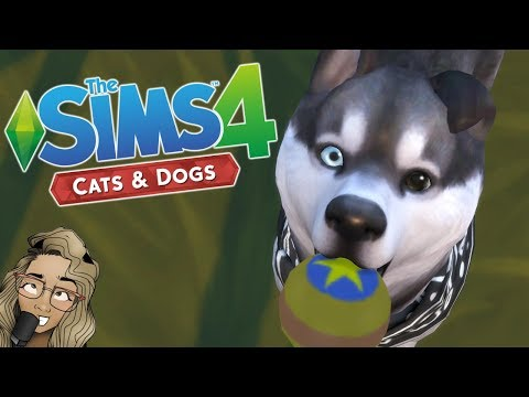 The Sims 4: Cats and Dogs | GAMEPLAY FIRST LOOK |
