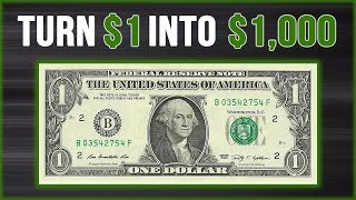 Turning $1 Into $1,000 Profit (In 35 Days) SEE HOW