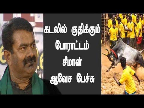 கடலில் குதிக்கும் போராட்டம் சீமான் ஆவேச பேச்சு - Seeman Speech On Jallikattu - Must Watch