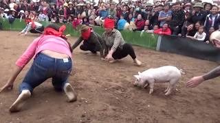 Bịt mắt bắt lợn | Hội Đình Thôn Lạc Dục - Xem cười thoải mái