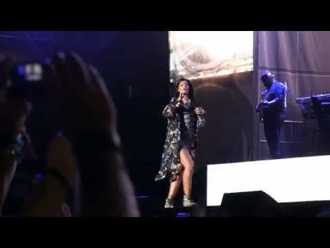 "Eminem & Rihanna @ Lollapalooza 2014- ""Love the Way You Lie"" HD 8-1-2014"