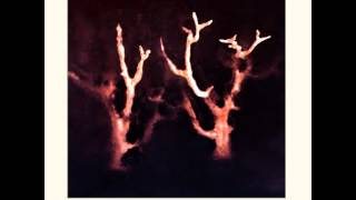 Watch Sol Invictus Trees In Winter video