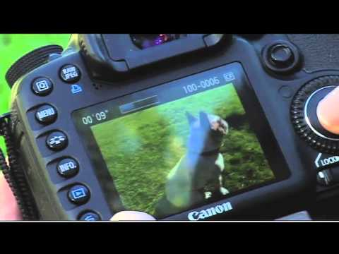How to Shoot Slow Motion Video with the Canon EOS 7D