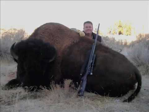 One Ton Bison vs 45-70 Govt. Buffalo Bore ammo