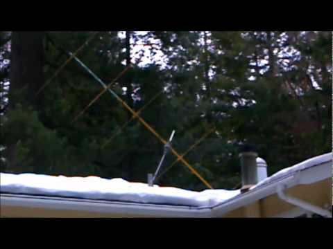My  Ham Radio Antenna Fell Over