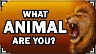 Play this video What ANIMAL Are You? Personality Test With Animals