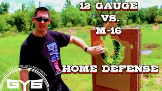 HOME DEFENSE--12 Gauge or M-16?