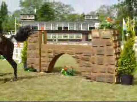 Konie-csi Sopot 2008-filmiki
