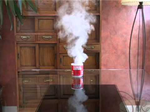 Video youtube - Fumigene anti puce ...