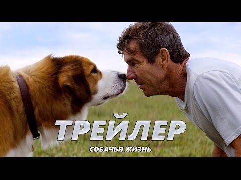 Собачья жизнь - Трейлер на Русском   2017   1080p