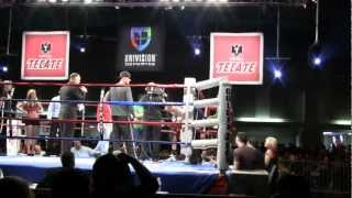 Download Lagu Isaac Torres 1st pro fight knockouts opponent in 21 seconds Gratis STAFABAND