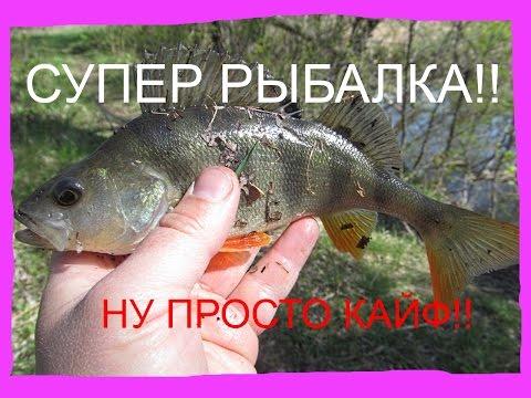 весной на рыбалку видео