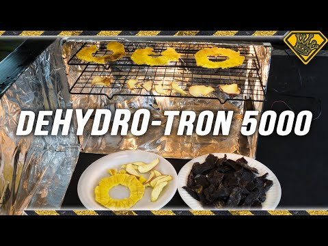 Dehydro-Tron 5000: Make Beef Jerky at Home!