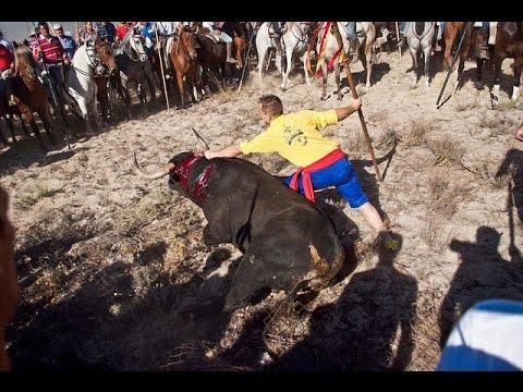 Tensión en Tordesillas durante el torneo del Toro de la Vega