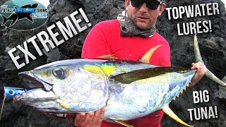 Extreme! Lure Fishing for Giant Tuna from the shore   TAFishing