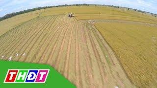 Nông nghiệp Việt Nam đương đầu với 2 thách thức lớn | THDT