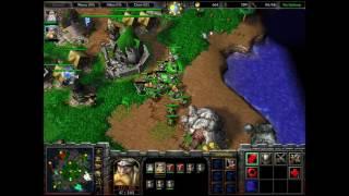 Warcraft III TrollingNE + Sh00ter vs Ca$h + MagicMushroom