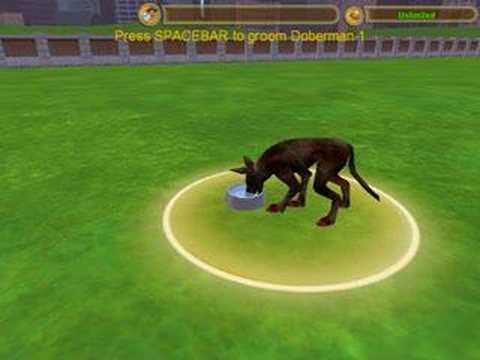 Dog in zoo tycoon 2