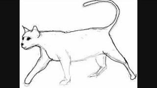 Andere Katzen basteln  Basteln amp Gestalten